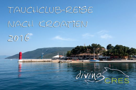 Diving Cres